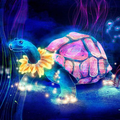 Photoshop-Drawing, Turtle